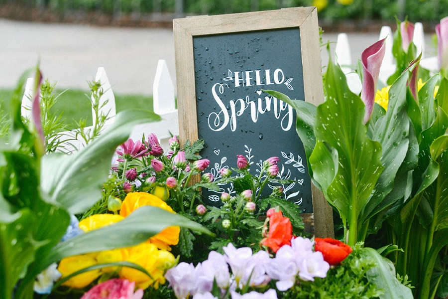 Springtime at The Americana at Brand: Photo Op